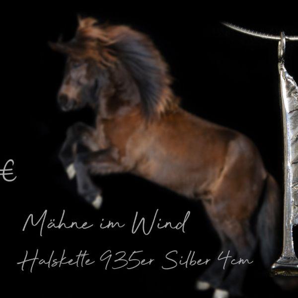2-shop-ma-hne-im-wind-dentler174EED0B-3CED-EB78-2A77-D2FF2C7051EB.jpg